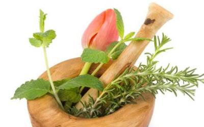 Hierbas medicinales para el riñón