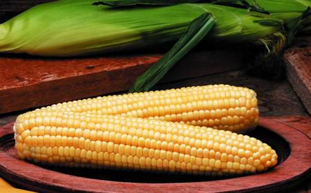Propiedades nutritivas del maíz