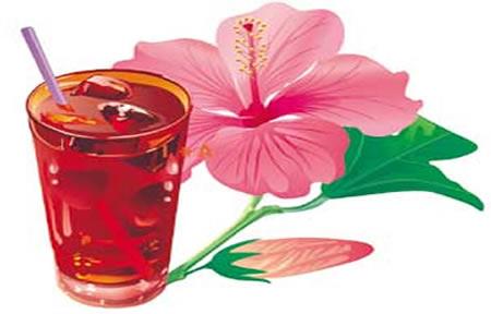 Recetas con flor de jamaica para adelgazar