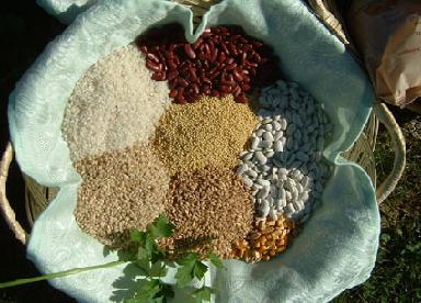 Alimentación para el ácido úrico