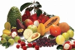 Nutrientes para el buen funcionamiento del páncreas