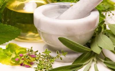 Plantas medicinales para los riñones