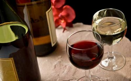¿Beber vino tinto o vino blanco?