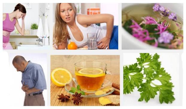 plantas para curara mi gastritis cronica