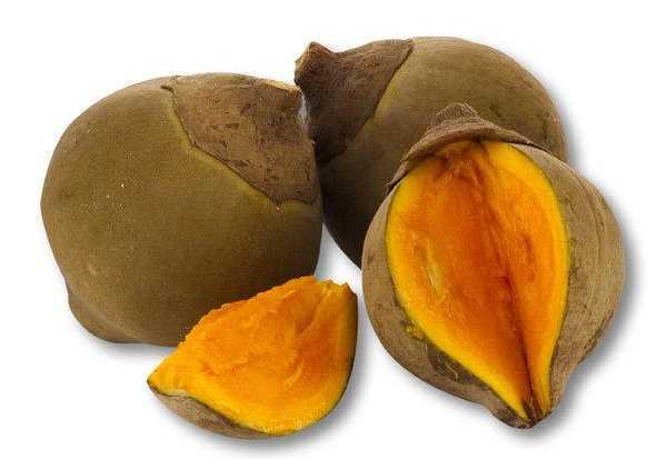 Frutas ex ticas zapote buena salud - Frutas tropicales y exoticas ...