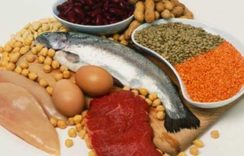 Proteinas de origen vegetal o animal