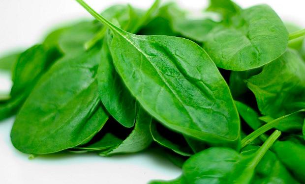 Espinaca aporta a tu organismo vitamina A C