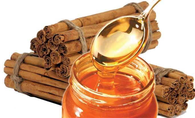 Resultado de imagen para canela y miel para cabello