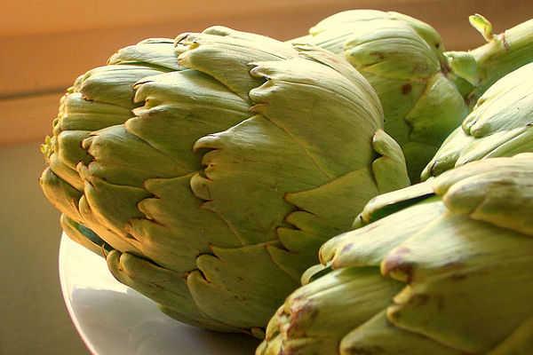 Alcachofa beneficios y contraindicaciones