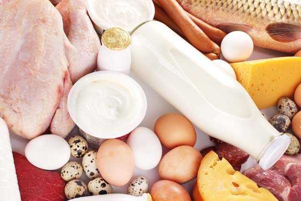 Dieta alta en proteinas nos ayuda a perder peso