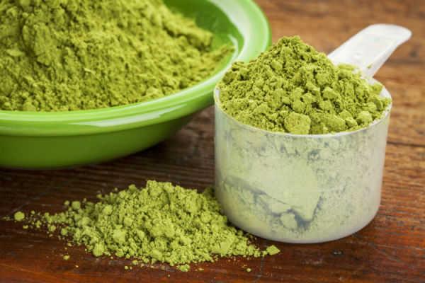 Moringa oleifera propiedades medicinales