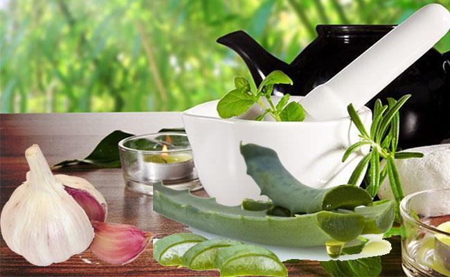 Plantas medicinales para el acne y como usarlas