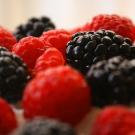 10 alimentos que ayudan a prevenir el envejecimiento2.jpg