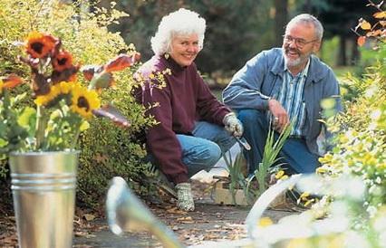 Beneficios de la jardinería en la salud .jpg