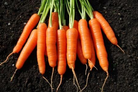 Beneficios de los vegetales anaranjados.JPG