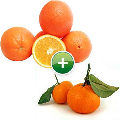 Cuál es la diferencia nutricional entre la naranja y la mandarina, Nutrientes naranja y mandarina