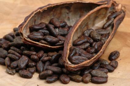 Propiedades y beneficios del cacao 1.jpg