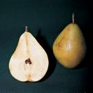 beneficios de comer semillas2.jpg