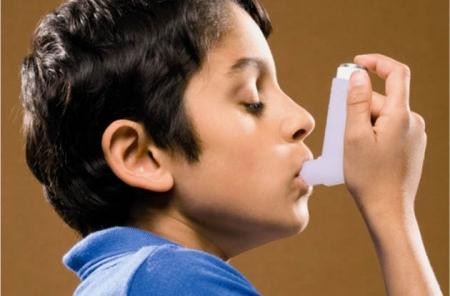 plantas medicinales para el asma1.jpg