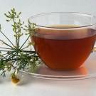 plantas medicinales para el asma3.jpg